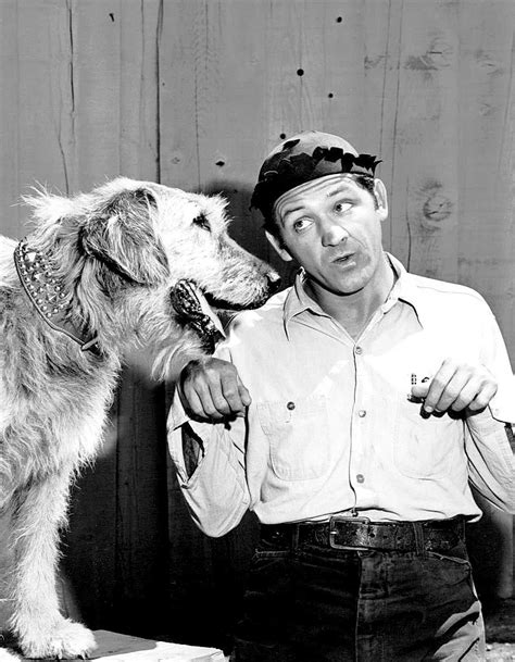 Secrets Behind 'The Andy Griffith Show' That Will Make You