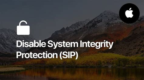 How to turn off System Integrity Protection (SIP) to run