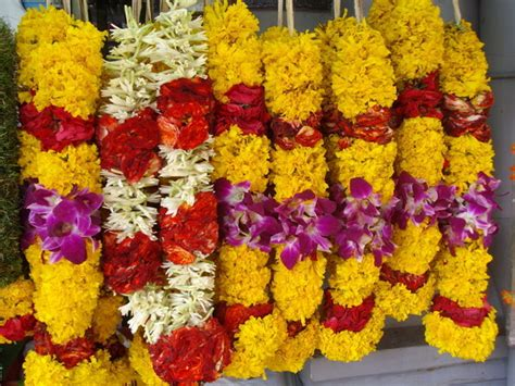 Flower garlands on the streets of Little India   Photo