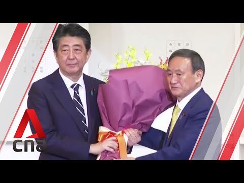 Shinzo Abe Cruises to Victory in Japan Snap Elections