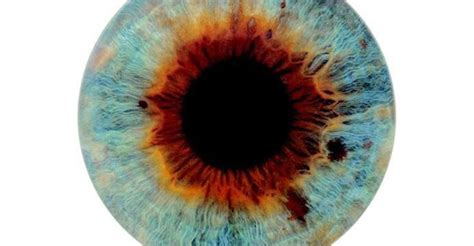 The Perfection Of 'I Origins'   KPBS