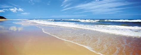 Discover Fraser Island   AAT Kings